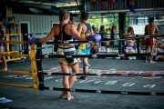 suta mauy thai overview training section copy